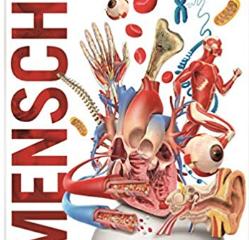 8 AMAZING KIDS' BOOKS IN GERMAN ON THE HUMAN BODY