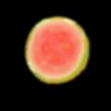 Brazilian Guava4.png