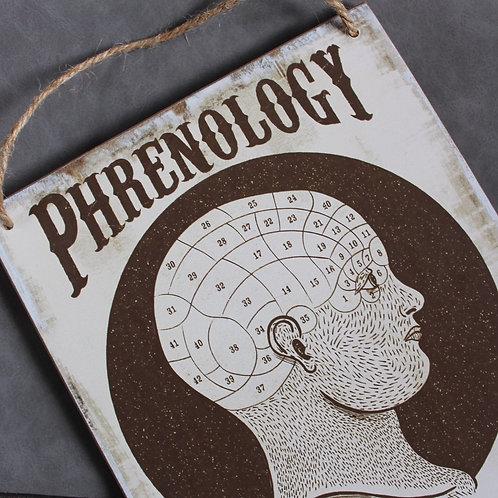 Phrenology wall sign