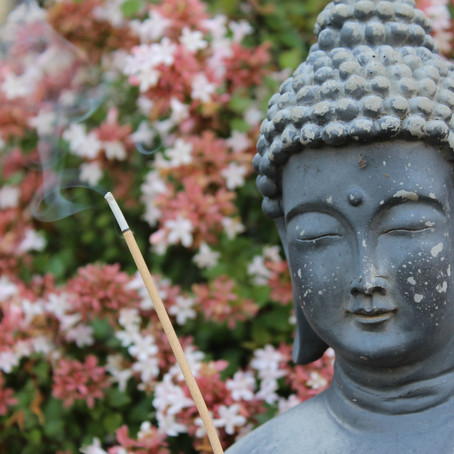Spring almanac / seasonal care guide