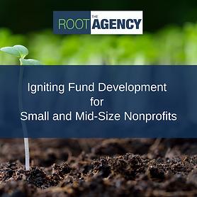 Igniting Fund Development - Wix Event.pn