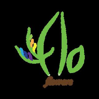 Flo Flowers