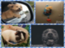 New Image.jpg