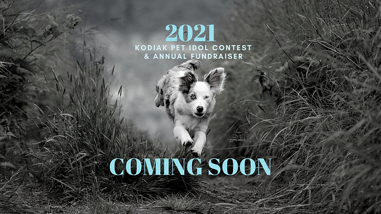 fb ccover Pet Idol 2021 Announcement.png