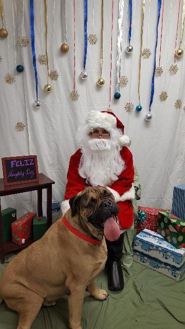 Mr. Bradford & Santa Paws