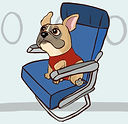 flying-with-an-emotional-support-animal.