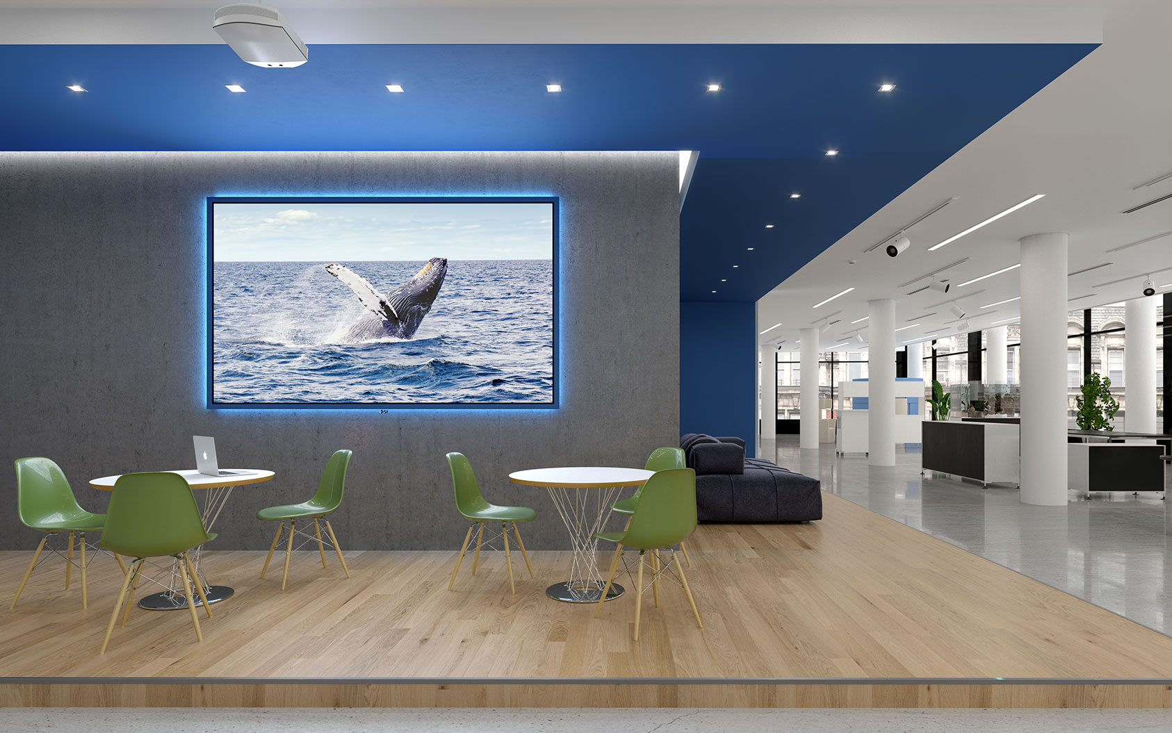 Commercial Projection Screen Installation