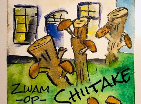 foto zwam op stam Shiitake kwekerij.jpg