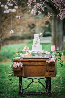 eastern shore maryland cherry blossom spring pink wedding cake table