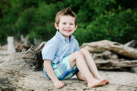natural beach family session drift wood spring