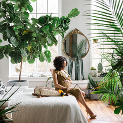 maternity portraits jungle hilton carter apartment therapy baltimore maryland boutique style fashion