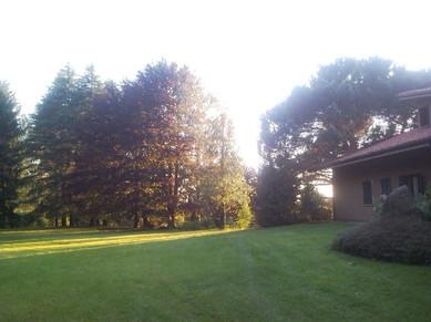 Villa Menta_Oggiono6.jpg