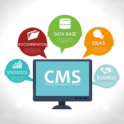 Content Mgmt Systems