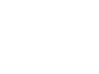 icon-cloud-protection White.png