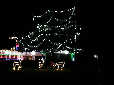 Cayce, SC Christmas Lights