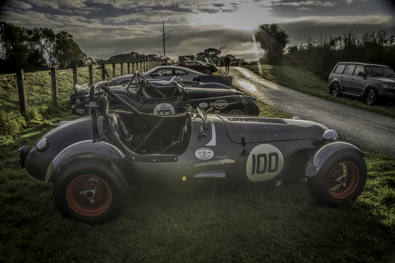 Jaguar's