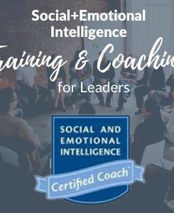 SEI Training & Coaching .png