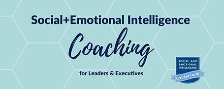 SEI Coaching .png
