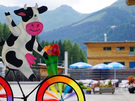 Ferien im SHIMA-Davos für Menschen mit speziellen Bedürfnissen
