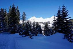 Wanderweg Blick Davos Berge