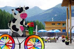 Kuh-Fahrrad mit Blick auf die Berge