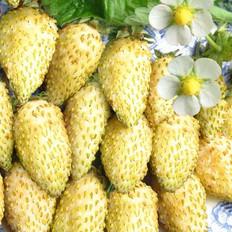 С ананасовым вкусом