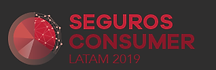 seg_consumer_2019.png