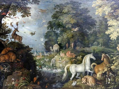 Golden age Dutch painting sells for over 50 times estimate at Bavarian saleroom