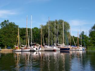 Surlingham Ferry