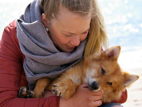 Le essenze per i nostri amici animali