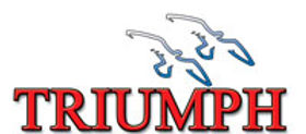 TRIUMPH support group logo.jpg