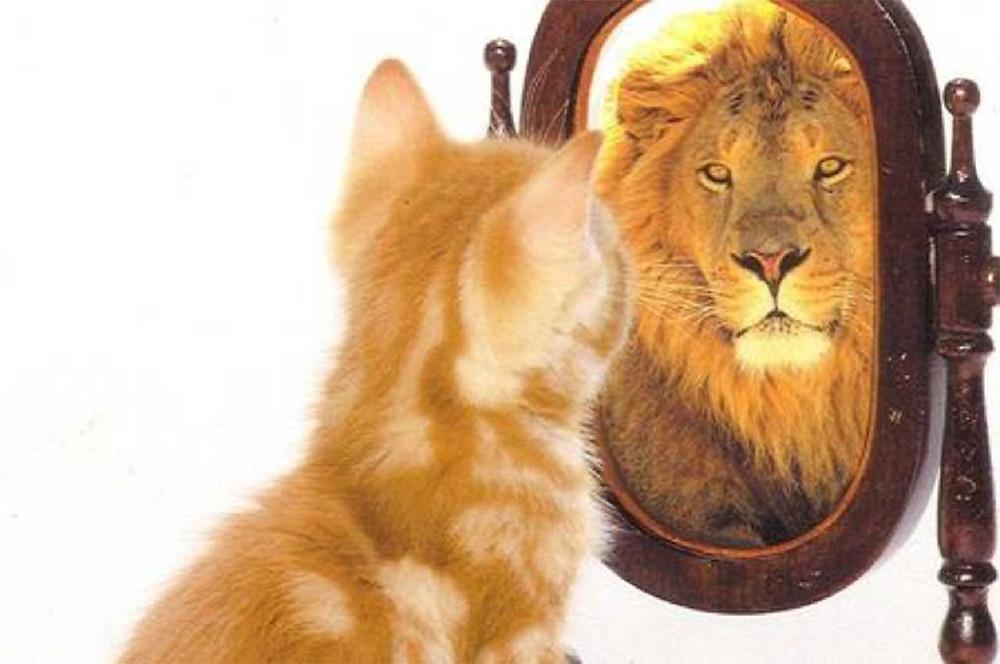 www.stefanoleone.it - Coaching individuale per migliore Autostima e Benessere nella tua vita. Sessioni di persona o via skype! contatta ora