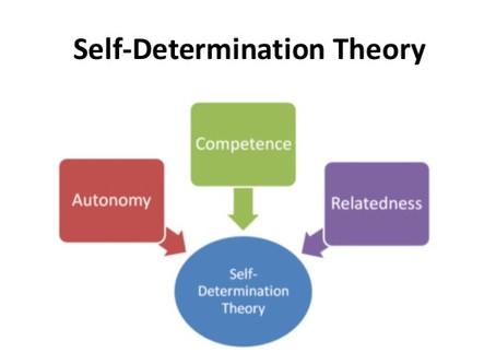 10 - La teoria dell'Autodeterminazione
