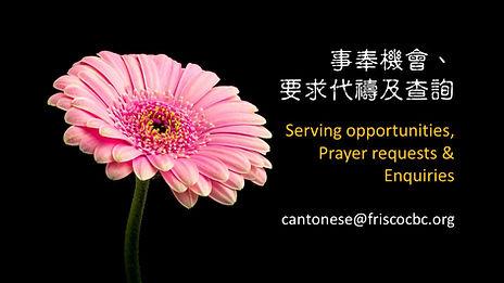 serving opportunities 1.jpg