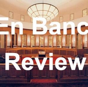 New en banc rules for Texas courts go into effect