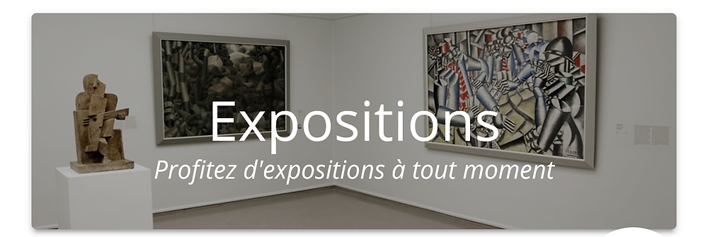 "Bouton ""Expositions"""