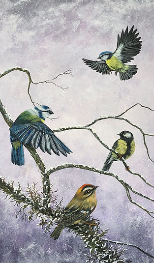 3) 4 oiseaux en hiverIMG_5407.jpeg