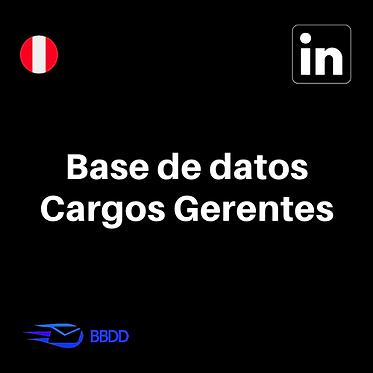 Base de datos Gerentes de Perú
