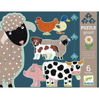 Ovelhas e amigos