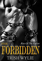The Forbidden cover