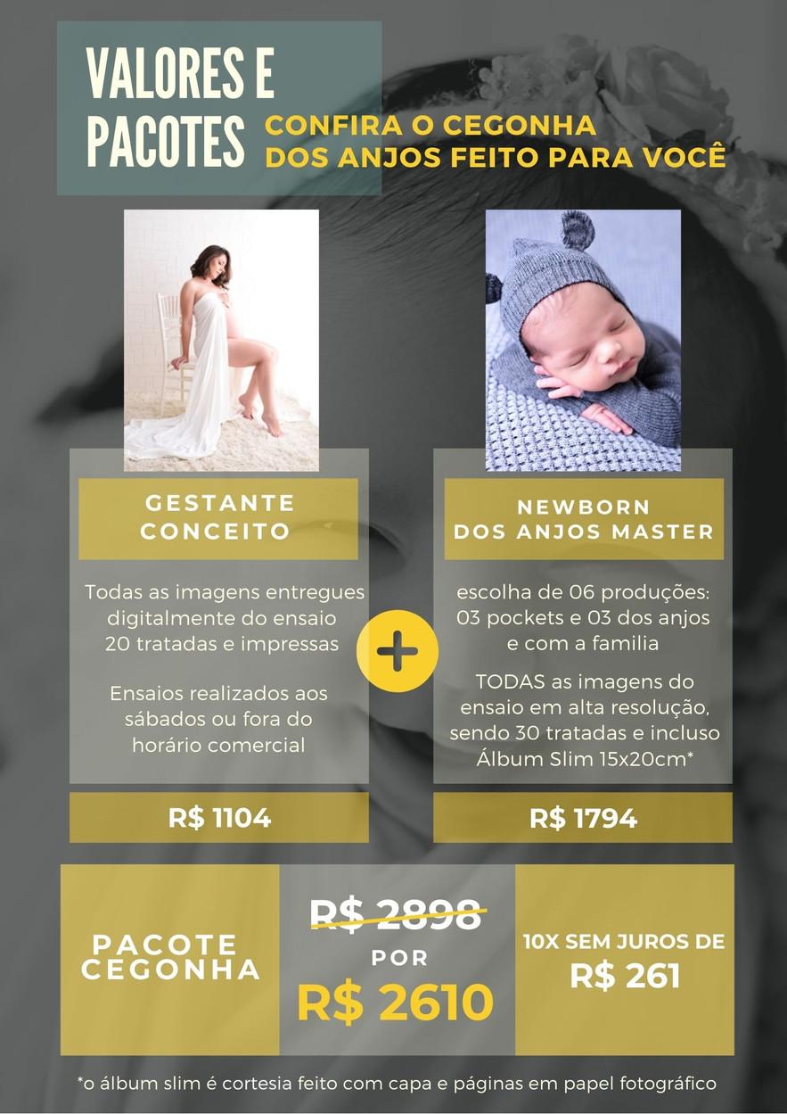 CEGONHA CONCEITO ESPECIAL 2021.jpg