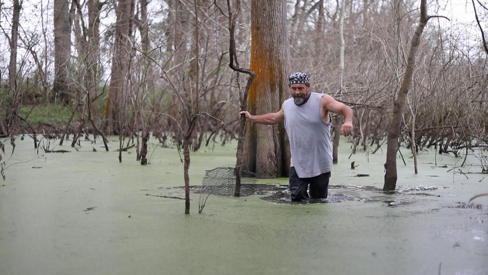 Setting Traps in Bayou