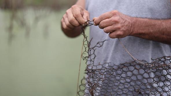 Crawfish Traps