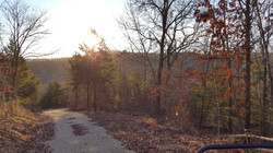 Morning drive to cabins