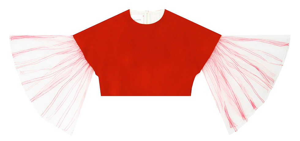 Red Ballerina Top with Hand painted sleeves