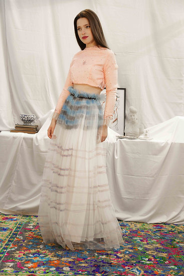 Blue Hand Painted Tulle Skirt with Candy Pink embroidered Top