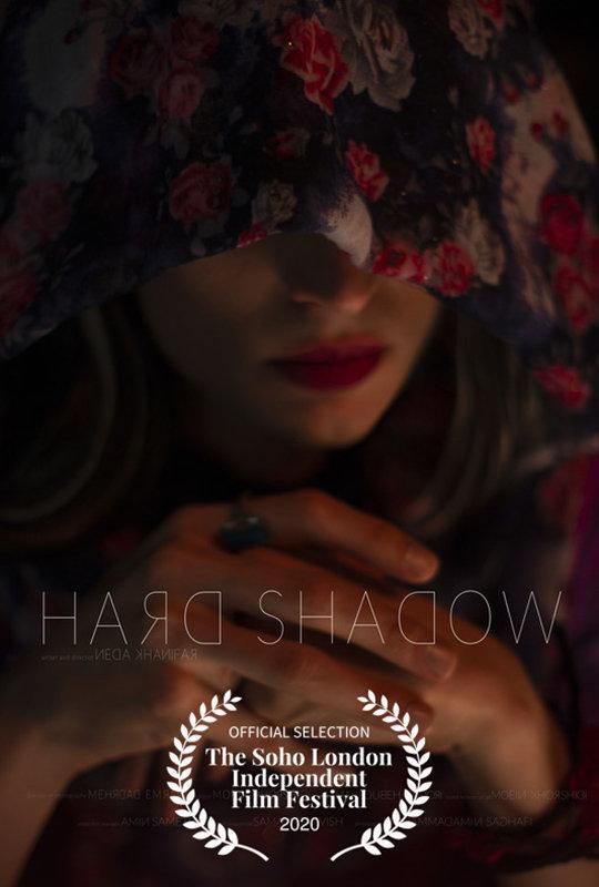 hard_shadow_laurel_800x540.jpg