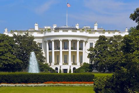 white house-02.jpg
