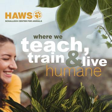 HAWS Brochure