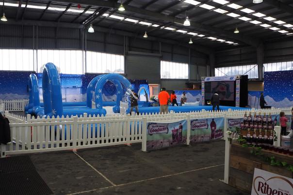 Big Freeze Festival Fun!